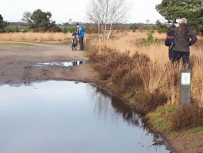 Na een flinke regenbui zoals afgelopen weekend, ontstaan er op verschillende plekken grote waterplassen.