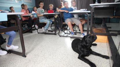 Raf, de vreemdste leerling van de klas