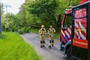Een deel van de Argonautenweg in Rotterdam is afgezet vanwege een omgevallen boom.