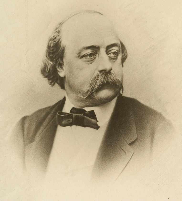 Gustave Flaubert Beeld