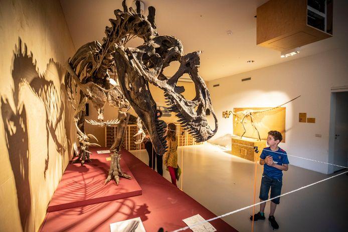 Bezoekers kunnen niet alleen genieten van muziek, ze krijgen ook toegang tot het museum inclusief de huidige tentoonstelling Dinosaurus!?