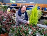 Hans Leutscher werkt bij Life and Garden in Renesse: 'In het voorjaar is het wel heel hectisch'