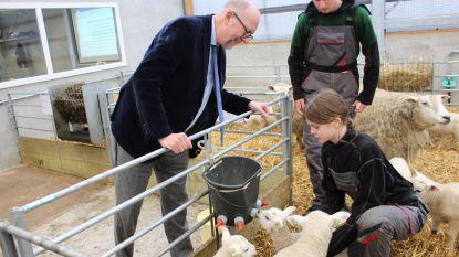 Provincie investeert 1,3 miljoen euro in gloednieuwe paarden- en schapenstallen en paardrijpiste voor PITO