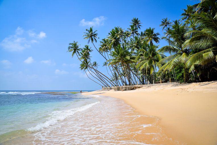 Panama heeft 2.490 kilometer aan stranden. Beeld Shutterstock
