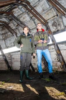 Kaplaarzen aan en gaan: natuurgebied Korendijkse Slikken is klaar na metamorfose