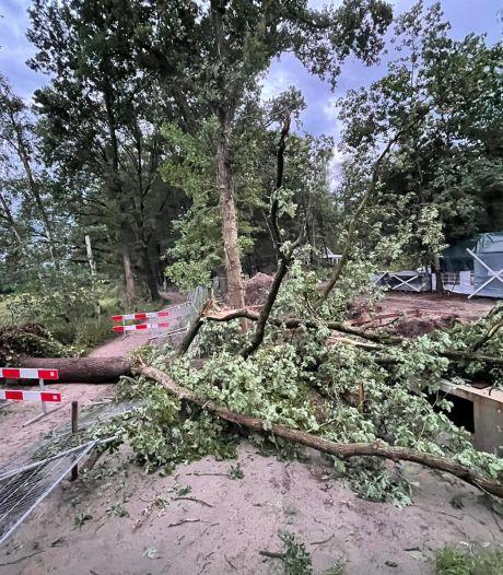 Onweer en windstoten richten schade aan in Brabant, bliksem splijt boom