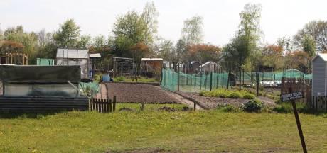 Buurtbewoners Zwilbroekseweg Eibergen niet blij met plan 'tussengepropte' tiny houses