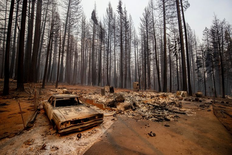 Extreme droogte leidt tot enorme natuurbranden, zoals hier in Grizzly Flats, Californië.  Beeld AP