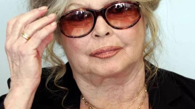 """""""Je pense à lui, je l'aimais, il me manque"""", déclare Brigitte Bardot"""