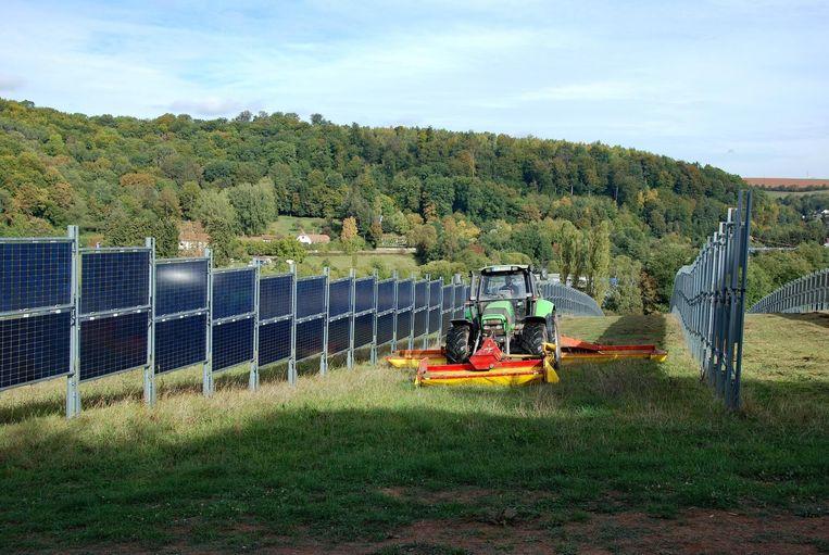 Verticaal staande panelen met tussen de rijen veel ruimte voor een tweede gebruik van de grond van de zonneweide. Beeld Next2Sun
