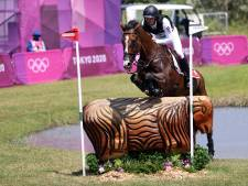 Zwitser moet paard laten inslapen