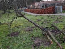 Vandalen teisteren basisschool 't Vossenhol in Groesbeek