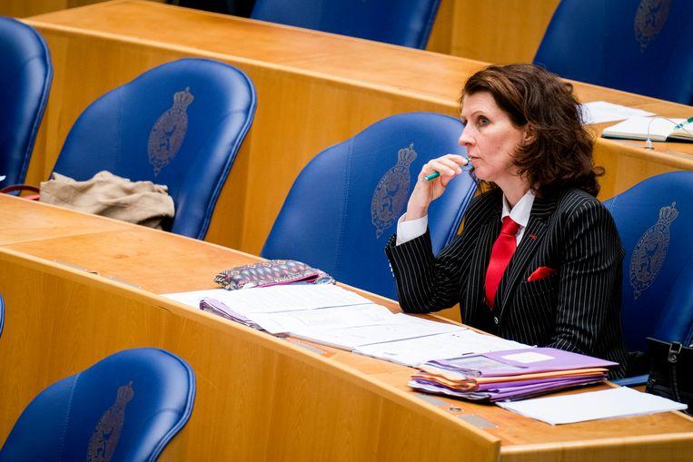 Esther Ouwehand (PVDD) tijdens de algemene beschouwingen in de Tweede Kamer.  Beeld Freek van den Bergh / de Volkskrant