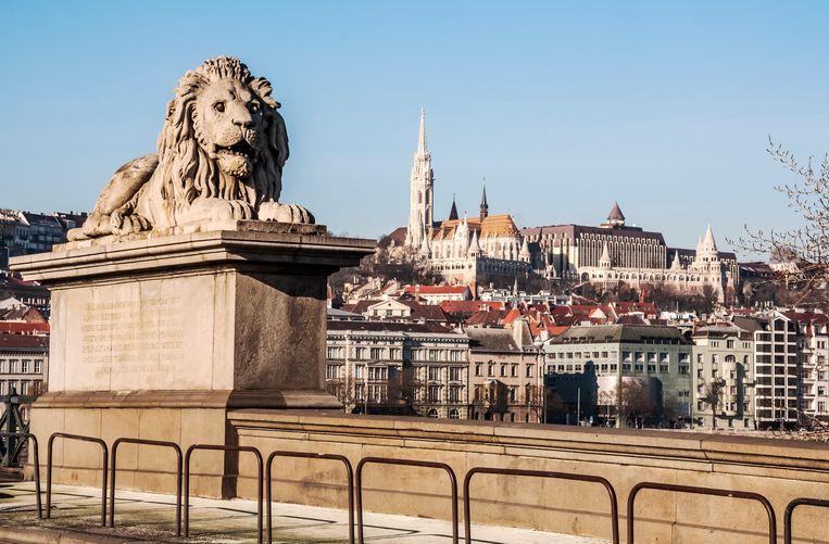 Uitzicht op Boedapest.  Beeld