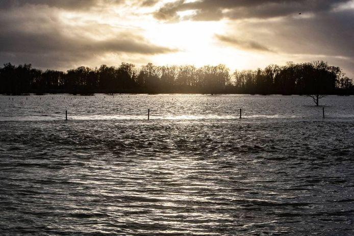 De IJssel (hier bij Nieuw Rande) is enorm breed, maar het hoge water geeft nog geen problemen in de uiterwaarden. Er kan nog makkelijk een metertje water bij.