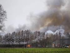 Piek dode dieren in 2020 na stalbranden in de regio: dit gebeurde er