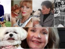 Bella Mia met erfenis van 1,3 miljoen niet de rijkste hond