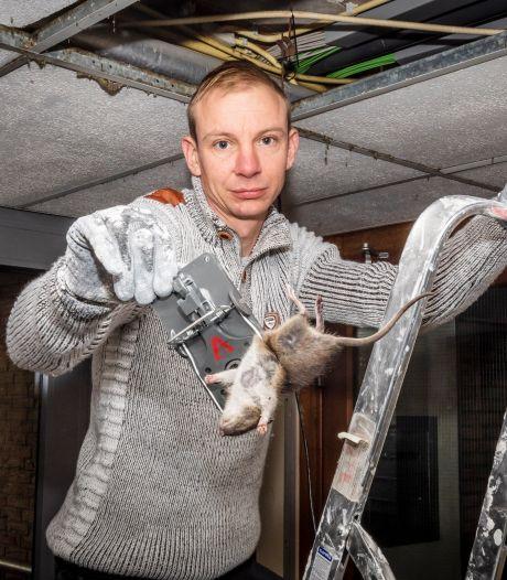 Gemist? Honderden ratten in Schiedamse flat en jongen raakt hand kwijt na afsteken vuurwerk