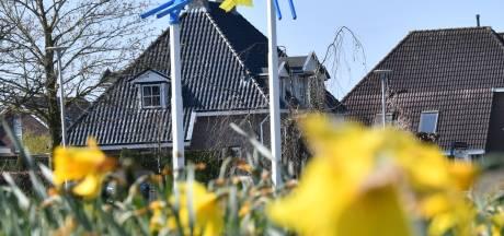 Ze zijn terug: de 'narcissen' van Alwie aan de Deldenerstraat in Goor