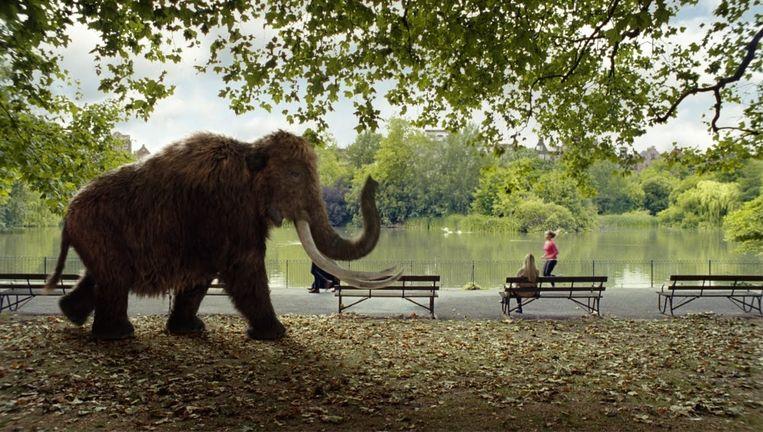 Werken grote dieren beter dan kleine dieren? Beeld