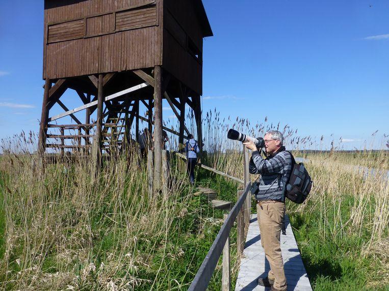 Ook naast de vogelhut valt goed te fotograferen. Beeld Monica Wesseling
