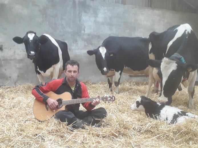 Arno Meijerman nam zijn lied op tussen zijn koeien.