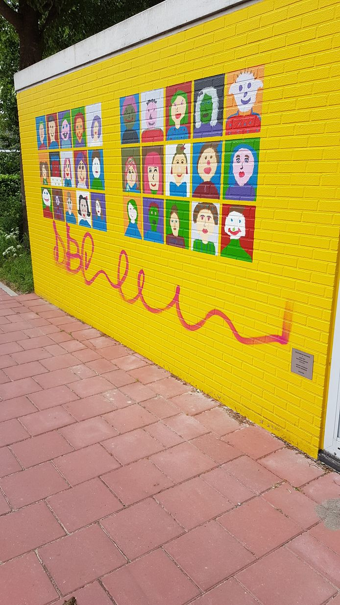 Het glasvezelhuisje van Reggefiber in Dorst is besmeurd met graffiiti. Leerlingen van de Marcoenschool hadden het grijze gebouwtje mooi beschilderd.