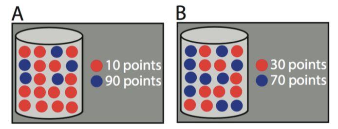 Voorbeelden van de loterij taak. Links is de te verwachten beloning lager dan rechts (A: 25% kans op 90 en 75% kans op 10 = gemiddeld 30 punten en B: 50% kans op 30 en 50% kans op 70 = gemiddeld 50 punten).  Bij loterij B) ben je wel onzekerder wat er gaat gebeuren; er is net zoveel kans op rood als op blauw. Hierna werd gevraagd hoe nieuwsgierig je was naar de uitkomst. Dit had verder geen invloed of je die uitkomst te zien kreeg; die werd 50% van de tijd getoond.
