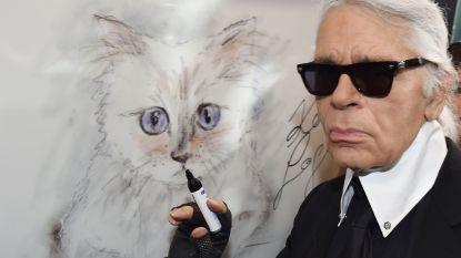 Karl Lagerfeld's Choupette krijgt eigen fotoboek