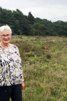 Wandeling met Ria Assink in het 'verborgene': op heideveld in Beckum regeert de stilte