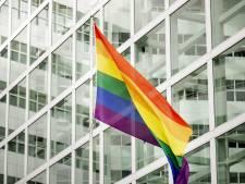 Hongarije sluit homoparen uit van adopteren kinderen