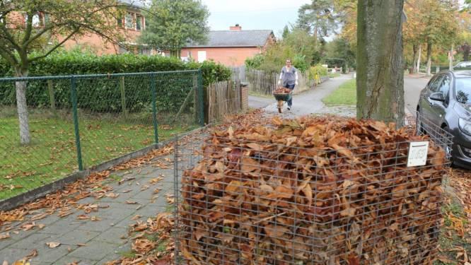 Gemeente plaatst deze herfst maar liefst 553 bladkorven
