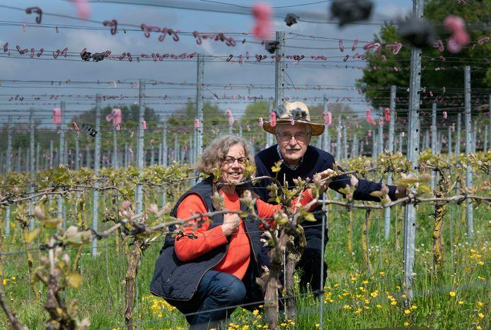 wijnmakersechtpaar Sija-Anna en Gert Hemelaar.