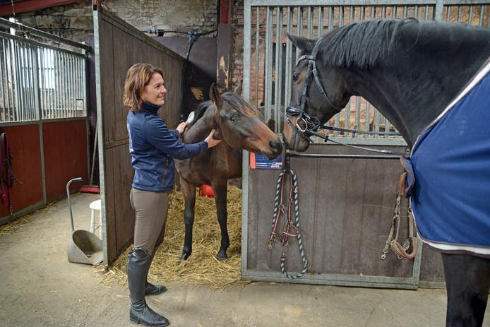 Jolanda Bevelander: ,,Communicatie met een paard is alles.''