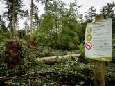 Toch wandelaars in bossen Leersum, Staatsbosbeheer waarschuwt: 'Blijf weg, het is levensgevaarlijk!'
