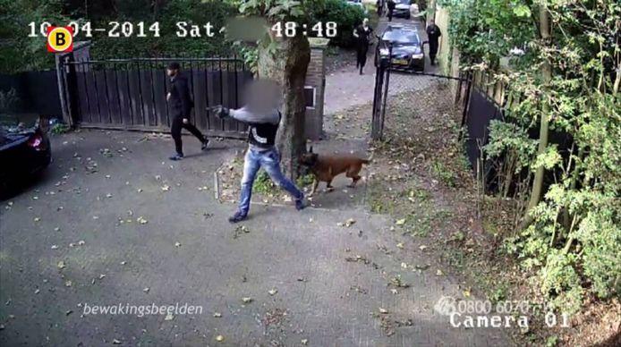 Een paar maanden na een gewelddadige overval in Tilburg, werd de verdachte zelf doelwit toen No Surrenderleden hem in Eindhoven onder vuur namen