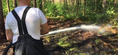 Brandje in bos nabij Hut van Mie Pils in Waalre