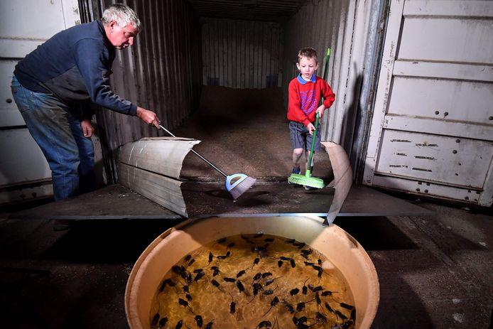 Een boer en zijn kleinzoon in de weer met een zelfgemaakte val met water voor muizen.