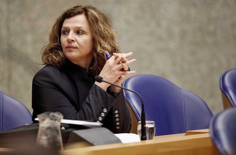 Minister Edith Schippers tijdens het vragenuurtje in de tweede kamer. Beeld anp