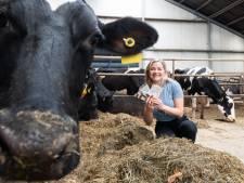 Boerendochter Yvonne (23) ontwikkelt een eerlijke chocoladereep: 'Alles lokaal, met oog voor de boer'