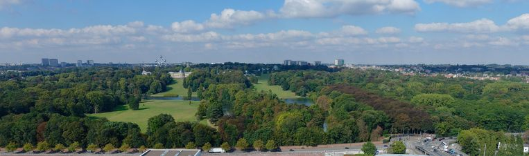 Het 'Central Park' van Brussel is 186 hectare groot en is een oase van rust en groen in het hart van onze hoofdstad. Beeld Mark Baert