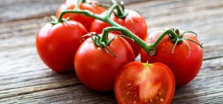 Pourquoi il ne faut pas conserver ses tomates au frigo