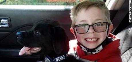 """Un garçon de huit ans vend ses cartes Pokémon pour payer l'opération de son chien: """"Je ne voulais pas perdre mon meilleur ami"""""""