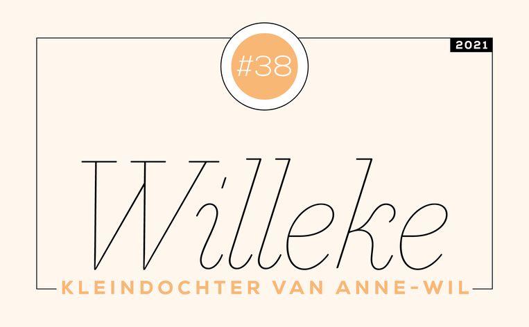 Willeke #38 Beeld Libelle
