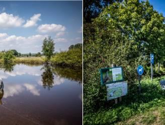 """Vijftig dagen na waterellende in West-Limburg: """"Dijkbreuk hersteld, stank verdwenen, maar van klimaat moeten we echt een aandachtspunt maken"""""""