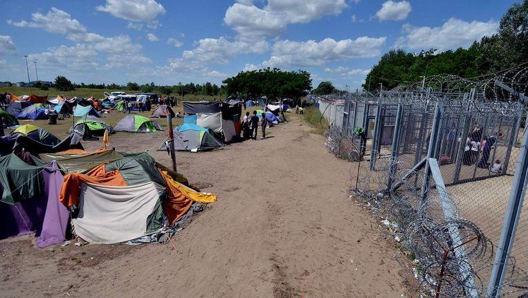 Vluchtelingen aan de Hongaarse grens. Beeld afp