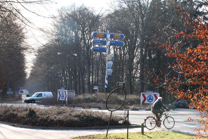 Rotonde met zicht op de boomrijke Broekhuizerlaan.