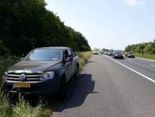 Actievoerders Oostvaardersplassen laten edelherten los op A6: 'Dit is zo gevaarlijk'