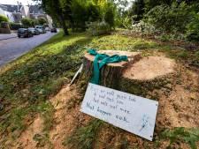 Kettingzaag wekt bewoners Ebbingestraat in Kampen: es ondanks protest gekortwiekt tot stronkje