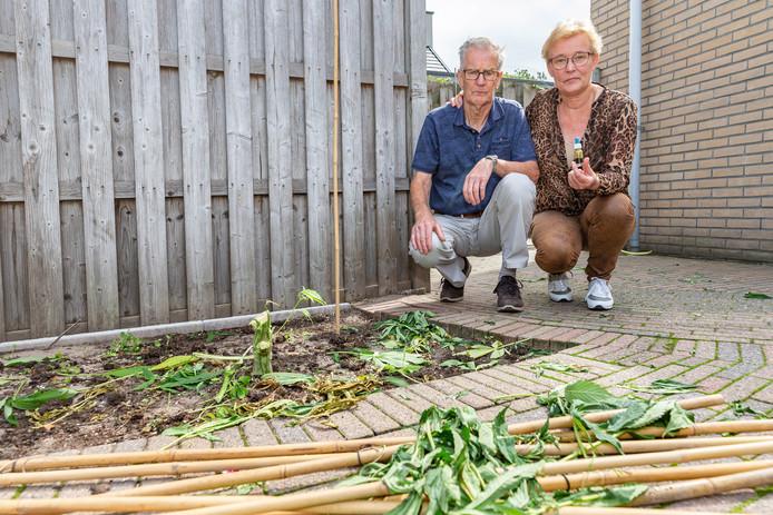 Jan en Jannie van Raalte zonder wietplanten in hun tuin.